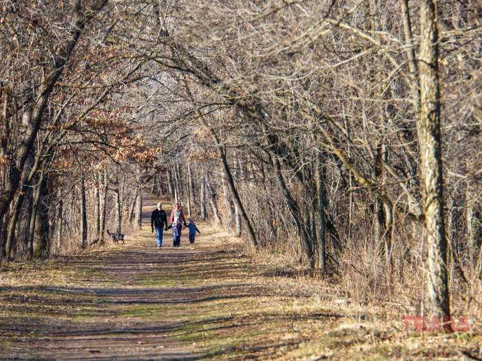 A family of four walks the hiking trails at Minnesota's Wild River State Park with their dog in the fall